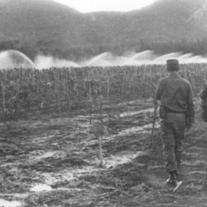 Pensamiento de Fidel 5 -1975