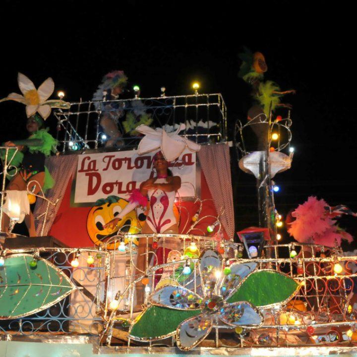Fiestas Pineras 8