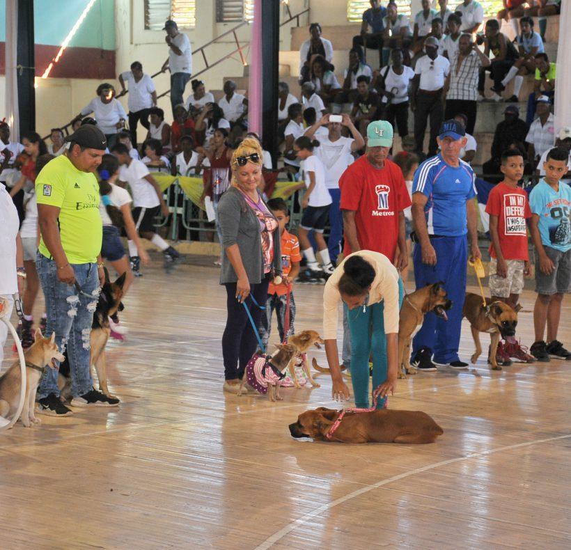 Día de la Cultura Física y el Deporte_05