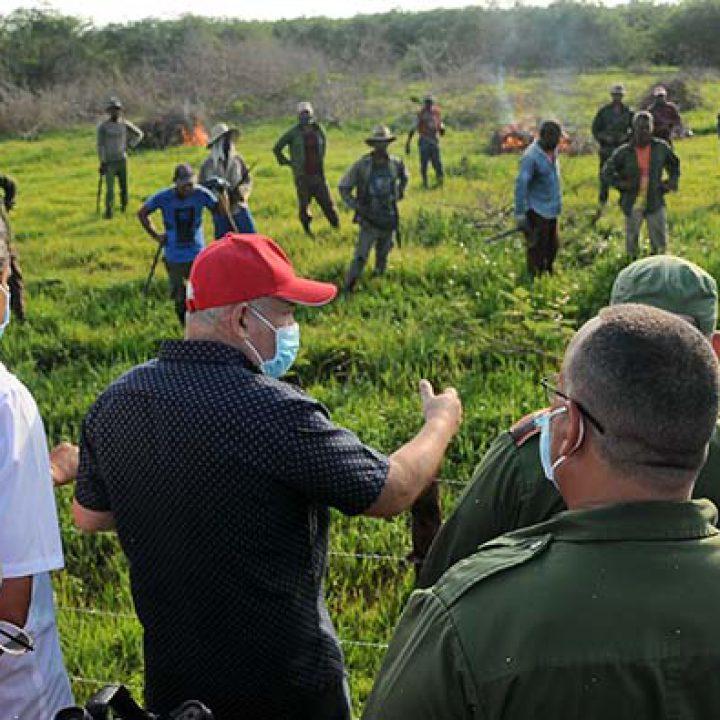 Recorrido de Vice Primer Ministro Jorge Luis Tapia Fonseca – fotos Yesmanis Vega Ávalos_01