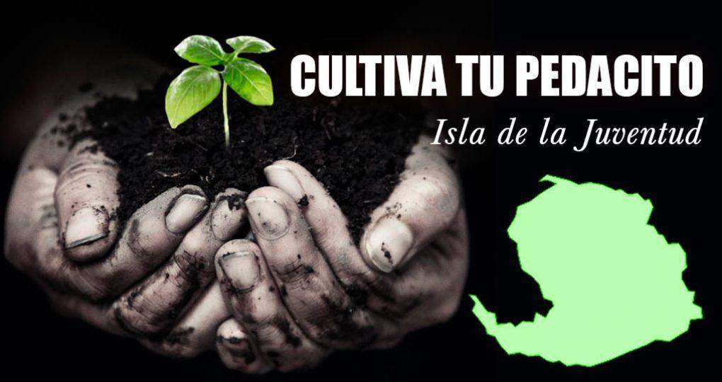 Cultiva tu pedacito – Isla de la Juventud